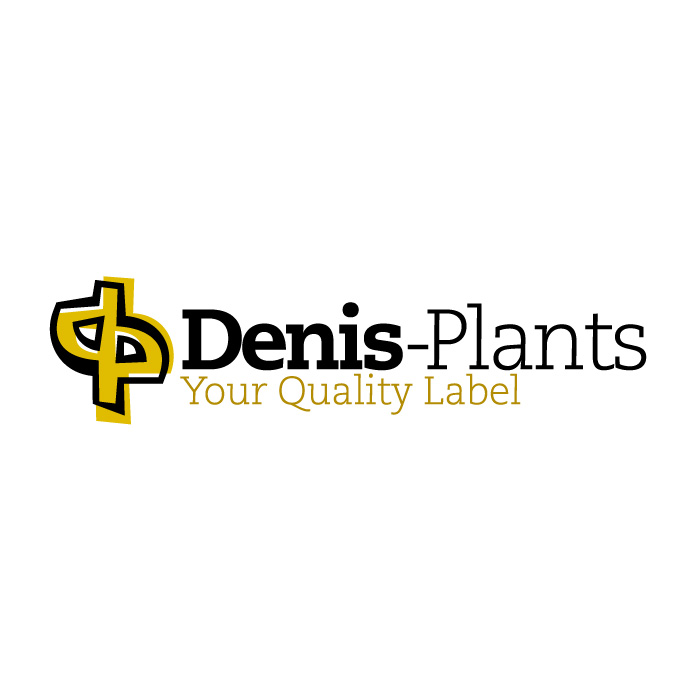 denis-plants